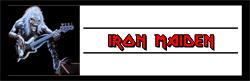 ironmaideneddieguitar